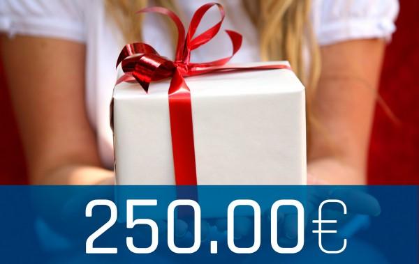Wertgutschein Onlineshop 250€